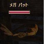 TODOSS_20080515_104749_0.jpg