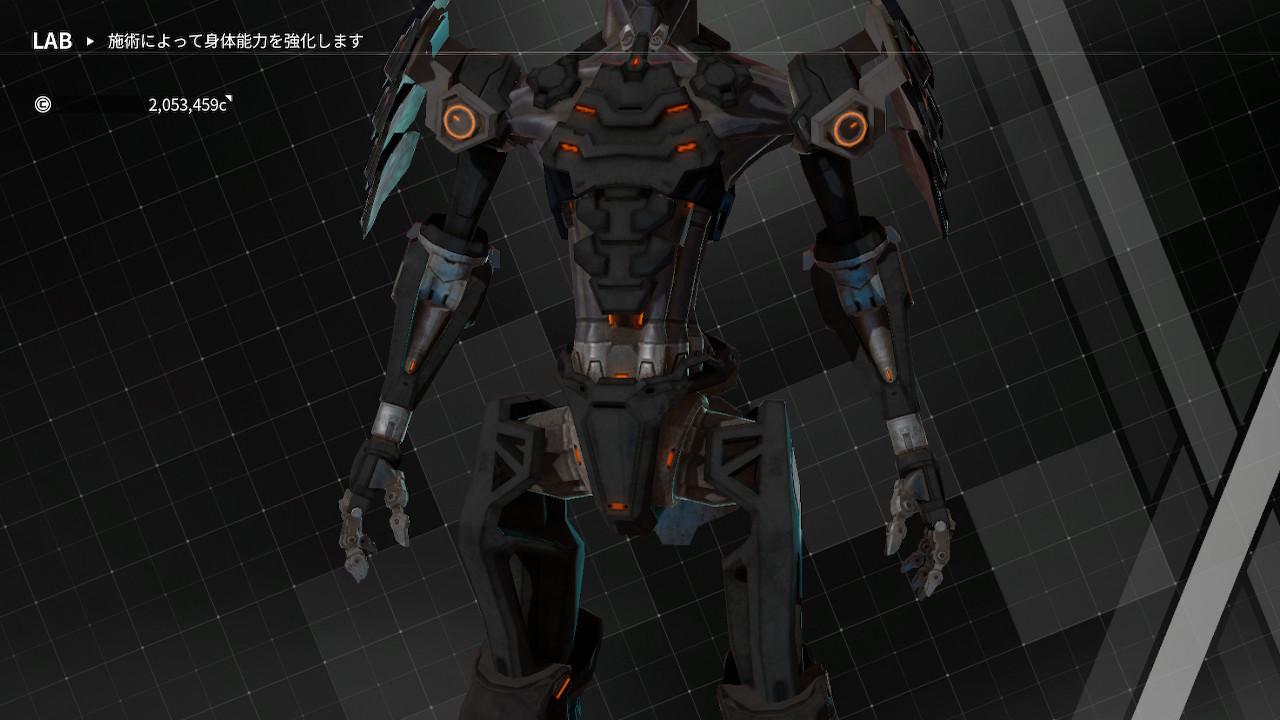 body_lv9_2.jpg