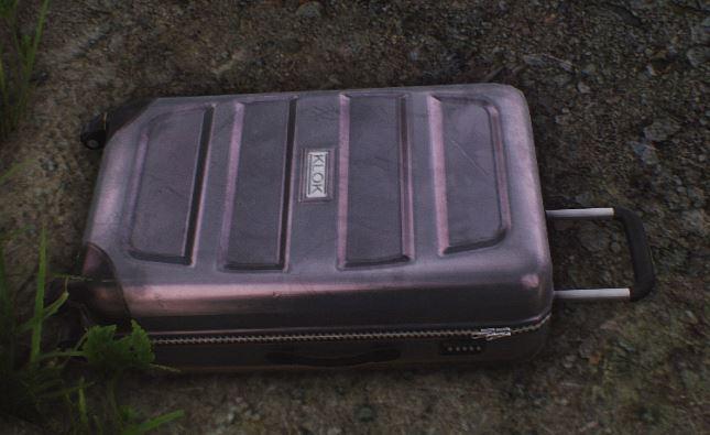 Plastic_suitcase_img.jpg