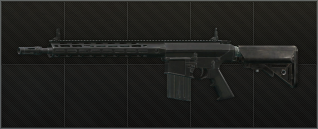 sr-25_cell.png