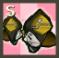 空間エルダー武器イヴ.png