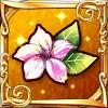 176_☆5_オシロイバナ_内気と臆病の花飾り.png