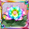 コダイバナの装花(虹)