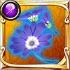 サイネリアの装花