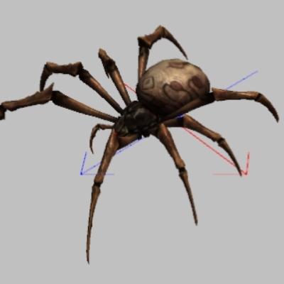 Arachnid.JPG