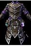 Silver Sentinel's Armor