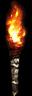 Skinner's Torch