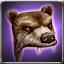 BearHat.jpg