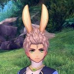 高級ふわふわウサギの耳.jpg