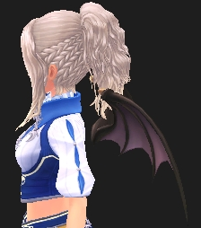 魔界の小悪魔の翼_0.PNG