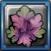 幻紫草.png
