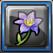 錫蘭花.png