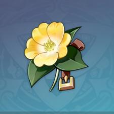 冒険者の花.png