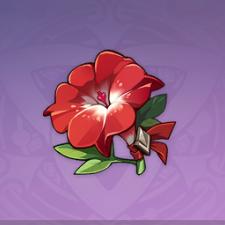 武人の赤い花_4.png