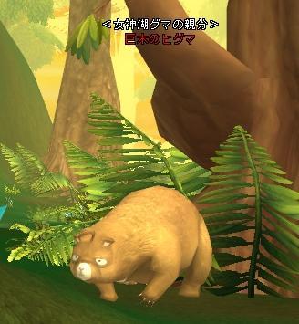 巨木のヒグマ.JPG