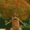 古老の木にとまる人.PNG