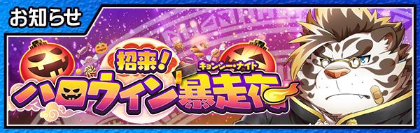 banner_jiangshinight2019.jpg