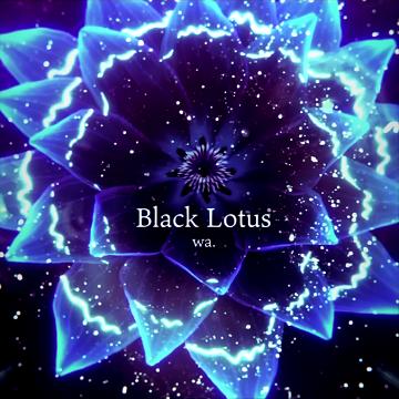 blacklotus.png