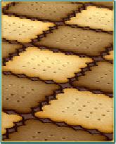 クッキーの床.png
