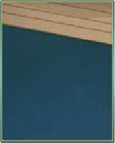 ブルーカーペット.png