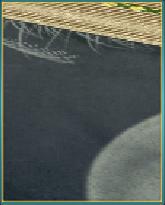中秋の名月敷物.png