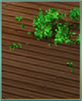 新緑のフローリング.png