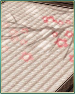 早春の床板と畳.png