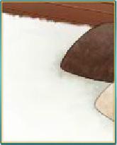 真っ白なフワフワ絨毯.png