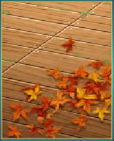 秋の床板.png