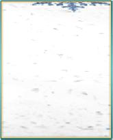 雪模様の特製絨毯.png