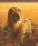 TV版長編第14作のライオン