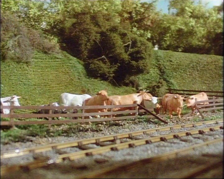 TV版第2シーズンの牛