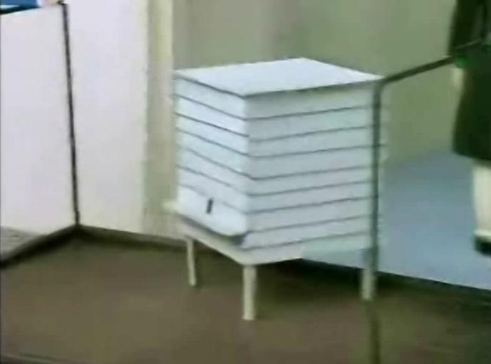 台車に載せた蜜蜂の巣箱
