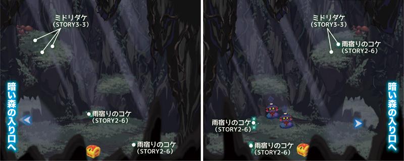 暗い森・木のうろ0824.jpg