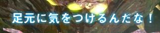 2nm_3.jpg