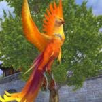 妙羽の鳥(Lv3).jpg