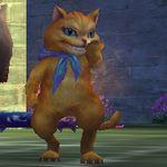猫(Lv2).jpg