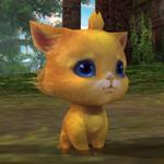猫(Lv1).jpg