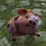 虎猪(Lv2).jpg
