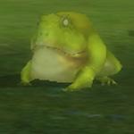 青蛙(Lv1).jpg