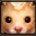金鼠.jpg