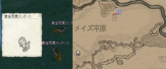 mabinogi_2007_10_04_003.jpg