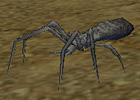 monster_white_ant.JPG