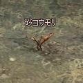 sand_bat.jpg