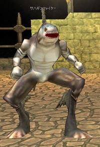 mabinogi_2005_09_30_002.jpg