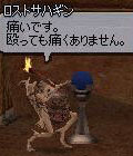 sagihaso_0.jpg
