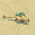 cactus_lizard_kid.jpg