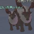 red_reindeer_pair.jpg
