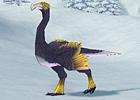 yellow_snow_ostrich.jpg