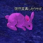 Mutant_Rabbit.jpg